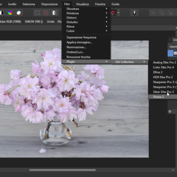 Affinity Photo Installare i Filtri Nik Collection