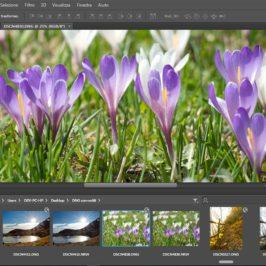Ripristinare Mini Bridge in Photoshop CS6