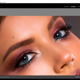 La nuova funzione Texture in Lightroom Classic e Adobe Camera Raw