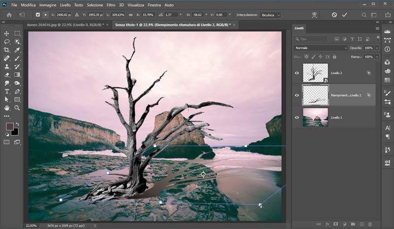 Strumento-Altera-in-Photoshop-CC-2020_3