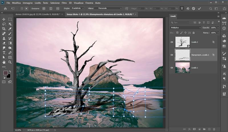 Strumento-Altera-in-Photoshop-CC-2020_4