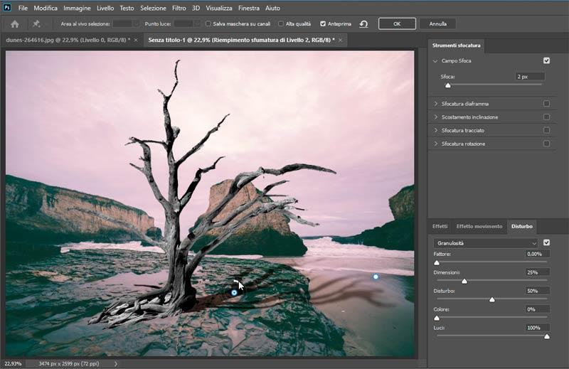 Strumento-Altera-in-Photoshop-CC-2020_5