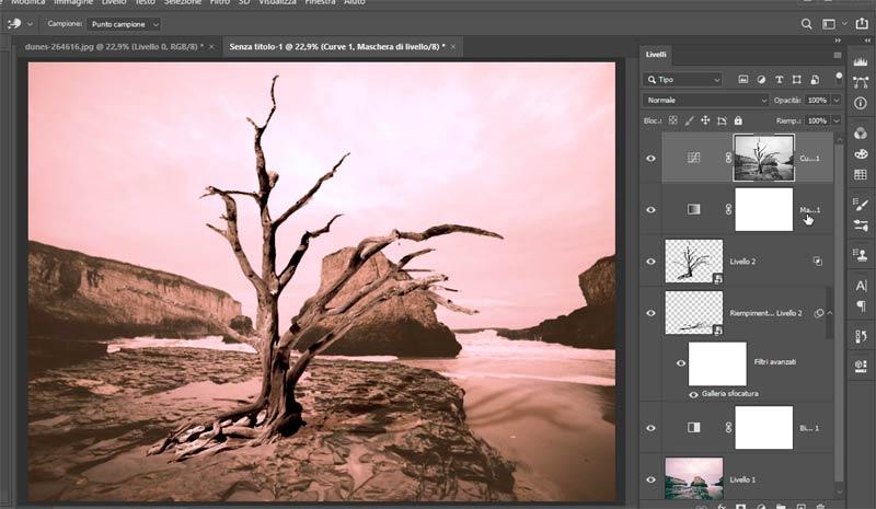 Strumento-Altera-in-Photoshop-CC-2020_7