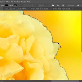 Selezionare con Maschera Vettoriale in Photoshop