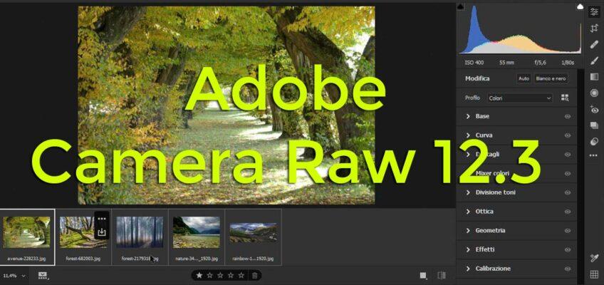 Nuova Interfaccia di Adobe Camera RAW 12.3