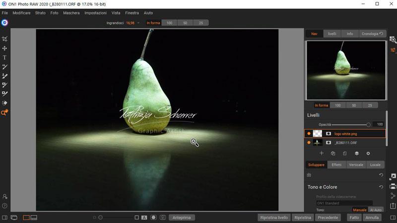 ON1 Photo RAW Watermark_1